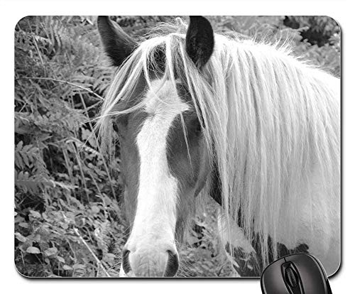 Mouse Pad - Horse Equine Photo Black White Pre Mane Animal -
