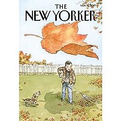 The New Yorker, November 6th 2017 (Luke Mogelson, Nicola Twilley, Kathryn Schulz)