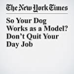 So Your Dog Works as a Model? Don't Quit Your Day Job | Zach Wichter