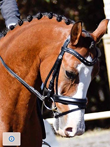 - Delfina Dressage Bridle Black with Dutch Drop Browband Flash Crank Cavesson Oversize