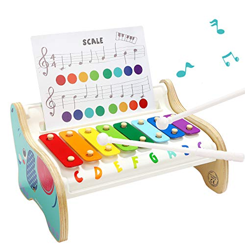 TOP BRIGHT Xylophone for Kids, Developmental Toy for 18 Month Old Children, Baby Instruments for 1 2 Year Old Boy and Girl Birthday Present