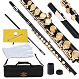 #3: Glory Closed Hole C Flute With Case, Tuning Rod and Cloth,Joint Grease and Gloves black/Laquer-More Colors available,Click to see more colors