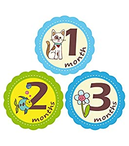 'MuchMore' Baby Monthly Stickers for Boy, Bodysuit Stickers ,Onesie Stickers Great Shower Gift Excellent baby photo props #7001