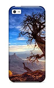 Best Protective Tpu Case With Fashion Design For Iphone 5c (tree)