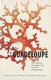 Nouvelles de Guadeloupe (French Edition)
