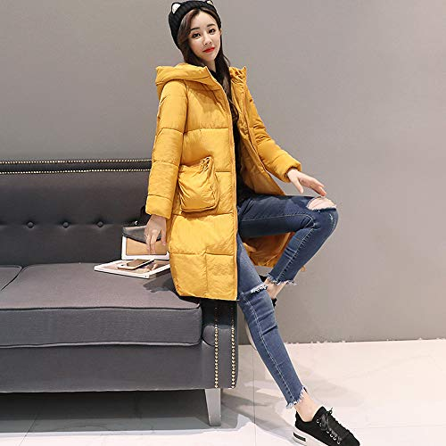 Amazon.com: Anboo Winter Coat,Women Winter Warm Faux Fur Hooded Thick Warm Slim Jacket Long Overcoat Coat Jacket Bf Style Oversized Jacket Coat Hoodied ...