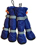 DuraPaws Water-Resistant Dog Boots - Snow Boots - Paw Protector for Snow, Rain & Salt (Set of 4 available in 5 Sizes) (Blue, Medium - 2.09'' Wide x 2.36'' Long)