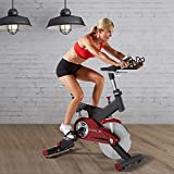 Sole SB700 Light Commercial Indoor Cycle Trainer Exercise Bike