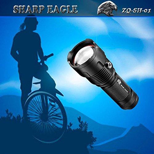 Sh Eagle (SHARP EAGLE ZQ-SH-01 XML-XPE 800LM 3 in 1 LED Flashlight)