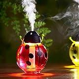 FollowFar Air Humidifier Cool Mist Humidifier Beetle Cartoon Shape 360 Degree Rotating Mini USB Humidifier for Car Office Home Desktop Water Supply Atomizer LED Light |(Red)