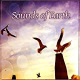 energy activity - Sounds of Earth – Rainfall, Jungle, Animals, Planet, Closely, Soul, Activity, Green Energy, Pure, Relax