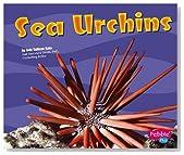 Sea Urchins (Under the Sea)