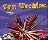 Sea Urchins (Under the Sea)
