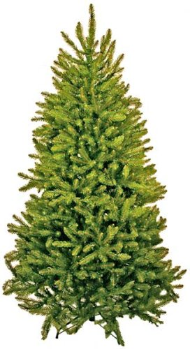 Good Tidings 6-1/2-Foot Artificial Cape May Fir Christmas Tree