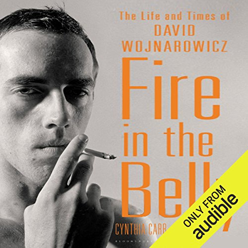 Fire in the Belly: The Life and Times of David Wojnarowicz by Audible Studios