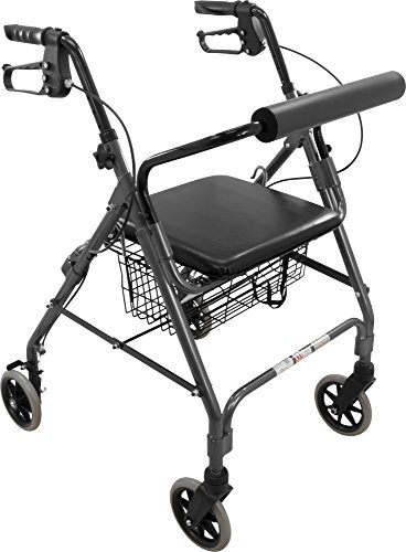 Roscoe Medical ROS-RL6GR Wheel Rollator/Rolling Walker with Padded Seat, 6