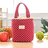 Best PackIt Ladies Lunch Bags - Casual Portable Lunch Bag Dots Insulated Canvas Thermal Review