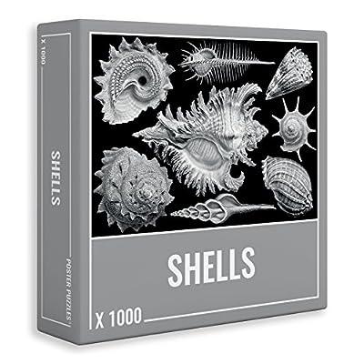 Puzzle 1000 Pezzi Cool Premium Puzzle Conchiglie Per Adolescenti E Adulti