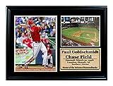 Encore Select 125-51 MLB Arizona Diamondbacks Framed Paul Goldschmidt Print, 12-Inch by 18-Inch