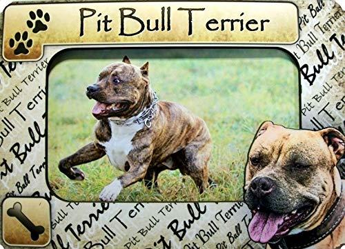Pit Bull Terrier Picture Frame Fridge Magnet