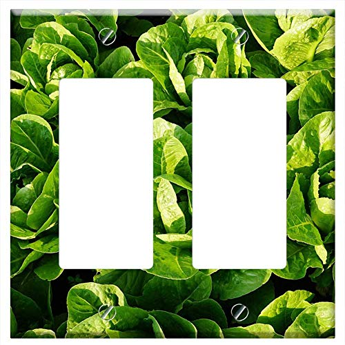 Switch Plate Double Rocker/GFCI - Salad Green Eat Frisch Vitamins Healthy
