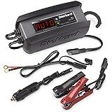 DieHard 71239 Platinum Smart Battery Charger & Maintainer (6/12 Volt 3 Amp)
