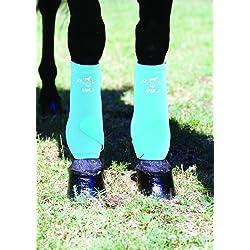 Professionals Choice Equine Smbii Leg Boot, Pair (Medium, Turquoise)