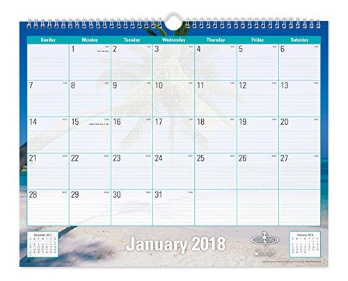 "Blue Sky 2018 Monthly Wall Calendar, Twin-Wire Binding, 15"" x 12"", Endless Summer"