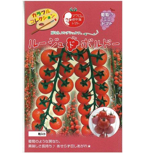 ミニトマト 種 【 ルージュドボルドー 】 種子 1000粒 B00CCY8NHO