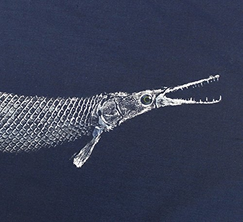 (GYOTAKU fish Rubbing Alligator GAR 8.5 X 11 Fisherman Gift quality Fishing Art Print by artist Barry Singer)