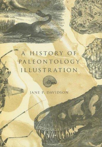 A History of Paleontology Illustration (Life of the Past)