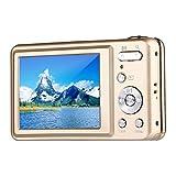 Digital Camera,Bigaint BG007 2.7' TFT 1280x720 5X Optical Zoom 15MP HD Anti-shake Smile Capture Digital Video Camera-Gold