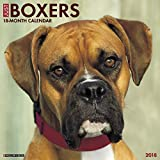 Just Boxers 2018 Wall Calendar (Dog Breed Calendar)