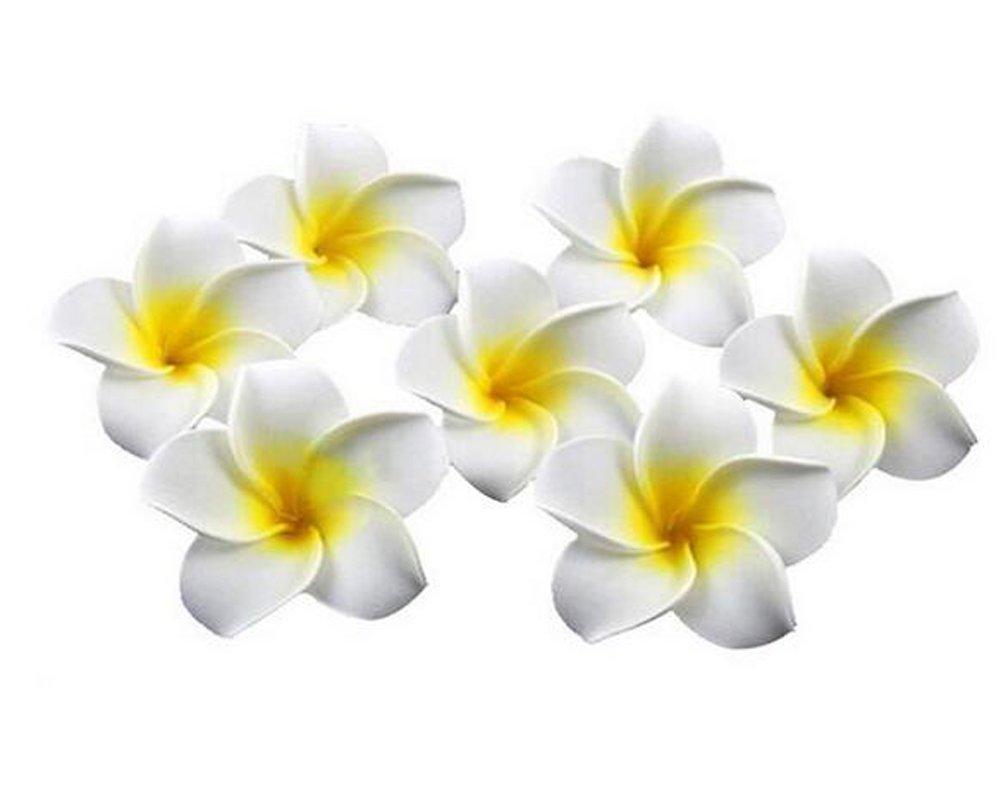 12pieza Mujeres niña, 2,4pulgadas/6cm Hawaii Plumeria espuma Flores pelo Clips para Boda Fiesta Beach Decoración Pasador de Pelo Hawaii Pinza de pelo erioctry