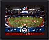 "Toronto Blue Jays 10"" x 13"" Sublimated Team Stadium Plaque - Fanatics Authentic Certified - MLB Team Plaques and Collages"