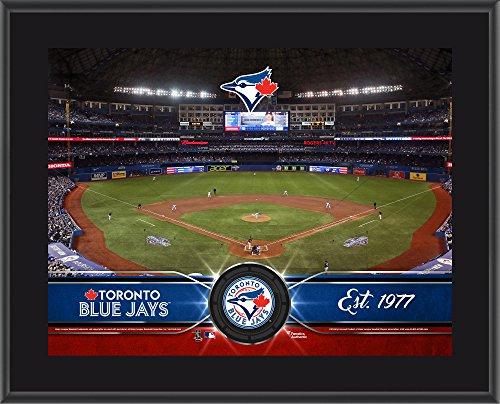 (Toronto Blue Jays 10