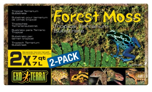 51YEaDBD8mL - Exo Terra Forest Plume Moss, 7 Quarts, 2-Pack