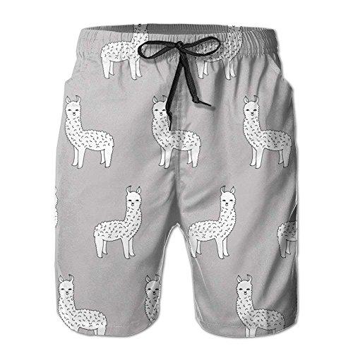 Secco Di Estate Bianco Pantaloni Spiaggia Alpaca Divertente Svago Pantaloncini Della Uomini Degli Di Nuoto Rapido 1wdnOdqHT