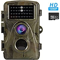 REXWAY Trail Camera for Hunting Game, 2.4 LCD Screen Night Version Cam, 12MP 65FT Waterproof and Low Glow Infrared with 16GB Memory Card (2.4 1080P)