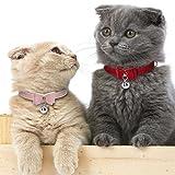 Stock Show 2Pcs Small Pet Velvet BowKnot Collar
