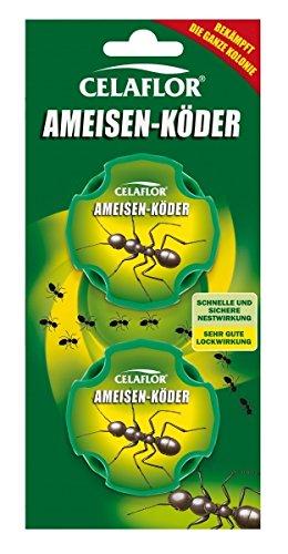 SCOTTS Celaflor Ameisen-Köder - 2 Stück