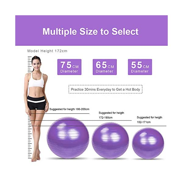 65cm 1000g Extra Thick Professional Grade Balance /& Stability Ball,Anti-Burst and Slip Resistant Fitness Ball with Pump Blue Perfect for Yoga /& Pilates LIXOTO Exercise Ball for Yoga