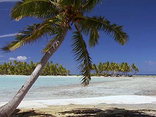 Polynesia ()