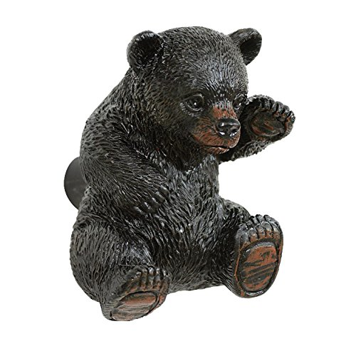 Curious Black Bear Cabinet Knob ()
