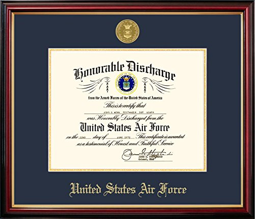 Campus Images AFDPT001 Air Force Discharge Petite Frame with Gold Medallion, 8.5'' x 11''