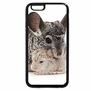 iPhone 6S / iPhone 6 Case (Black) chinchilla with cubs
