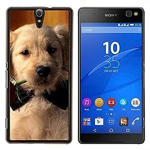Labrador Retriever Rose de Bowtie del perro de perrito- Metal de aluminio y de plástico duro Caja del teléfono - Negro - Xperia C5 E5553 E5506 / C5 Ultra