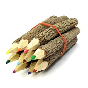TropicaZona Branch & Twig Assorted Colored Pencils, 10-Pack, Approximately 3.5 Inches Long, Small Size, Fits Nicely in Child's Hand