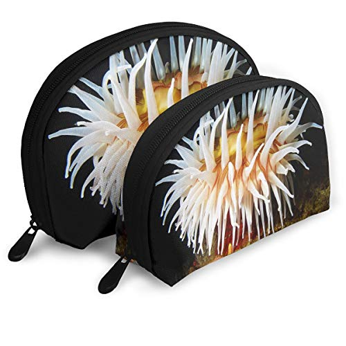 Makeup Bag White Anemone And Sea Star Portable Shell Storage Bag For Women Halloween Gift 2 Pack -