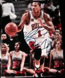 Derrick Rose Signed Photo - AUTOGRAPH STAR 11x14 COA - Autographed NBA Photos